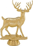 Buck Deer Trophy